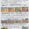 神原町花の会(花美原会)(310)    協同活動による冬越しの花壇整備