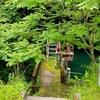 蛇喰沈砂池( 新潟県柏崎)