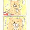 ネコノヒー「麻婆と水」/ Mapo tofu and water