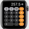 Apple Watchの新OS「watchOS 6」の変更点・新機能35個。小ネタも