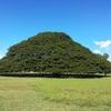 2月のハワイ新婚旅行4日目~モアナルナ・ガーデン「この木、なんの木」、ブレッド&バター、ティム・ホー・ワン~