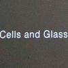 「細胞とガラス」林勇気 X 京都大学iPS細胞研究所 (KYOTO STEAM )