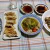 幸運な病のレシピ( 2451 )夜:餃子、ロールキャベツ