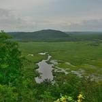 「釧路湿原」~日本最大の湿原の大自然を目の前にして、ちょっと曇ってましたがただただ感激!!