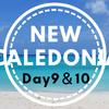 ニューカレドニア8泊10日【最終日】マルシェ・カジノ・シェトトとお土産散策から帰国