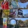 「しんじゅくシティウォーク 2018」に参加!紅葉を楽しみながら新宿を8km歩いてきた