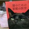 写真募集のお知らせと里親様募集仔猫ちゃん⑥