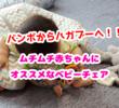 バンボからハガブーへ!ムチムチ大きめ赤ちゃんにオススメなお座り練習ベビーチェア!