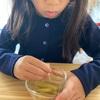 食事の時、左手を使わないとどうしてお行儀が悪く見えるのか?〜日本の食文化をちょっと暑苦しく解説してみる〜