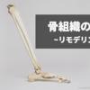 骨組織の細胞|骨芽細胞・破骨細胞・前骨芽細胞・ヴォルフの法則