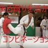 【フルコンタクト空手版】中~上級テクニック|後ろ蹴りを活かすコンビネーション