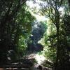 【中四国ぶらり旅2017】松山の穴場宿泊地「そらともり」から今治へ〈3・4日目ハイライト〉