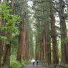 戸隠古道を行く。戸隠神社、徒歩での五社巡り。①