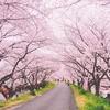 【詩・ポエム】春一番