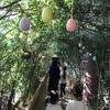 子連れ リゾナーレ熱海  1日目ー2  アクティビティの予約場所はひとつじゃ無い!!