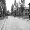 Auschwitz Birkenau🛤