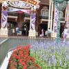 バナーの色と花壇の色