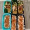 今週のお弁当〜今日のわんこ〜