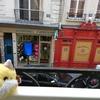 キツネ、フランスに行く。 Fox, goes to France.
