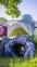 それが目なのかどうかさえ定かではない生き物のようなモノ『岐阜県多治見市・花水樹ふれあいパーク』