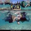 サンゴや熱帯魚とシュノーケル!