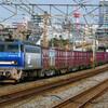 3月12日撮影 東海道線 平塚~大磯間② 貨物列車 5075ㇾ 2079ㇾ