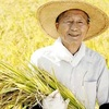 日本の農業をぶっ壊す「種子法廃止」は死と隣り合わせ