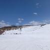 3月のロイヤルヒルはもう春間近。上部のパークはクローズだけど雪は締まっていい感じ