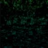 Unity パーティクル(6) 緑の文字列の雨 SF・サイバーっぽいタイトル画面