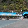 静岡県に行ってきました(2) 浜松・竜ヶ岩洞でコウモリの餌付けを見る