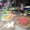 【ヒンディー語会話その1】ヒンディーは日本語と似てる。野菜売りとお客さんの会話