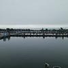 9月22日 椎の木湖 ヘラブナ釣り 思った通りにはいかない