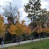 ポーランドで一番好きな街「ヴロツワフ」おすすめ観光スポット6選