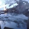 松之山温泉で安く雪見露天風呂が楽しめる温泉宿「玉城屋」の魅力を徹底解説!〜新潟を楽しむブログ〜