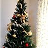本物のモミの木みたいなクリスマスツリーを飾って家族で楽しむ
