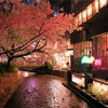 京都夜桜妄想譚 其の壱 さやかと高瀬川