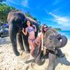 象さんビーチでニッコリ!