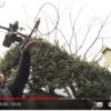 【ドローン】これは凄い!4分25秒のミュージックビデオを尾道の急な坂道で一発撮り【STU48「風を待つ」】