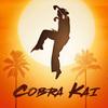 『ベスト・キッド』の現在が描かれる!ラルフ・マッチオとウィリアム・ザブカ出演のドラマシリーズ『コブラ・カイ(原題:Cobra Kai)』
