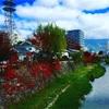 晩秋の松本を散歩してきたよ。