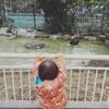 【1歳7ヶ月】天王寺動物園へ行ってきた