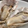冬の味覚「牡蠣(かき)」を楽しもう!「JR赤穂線沿線 かきまつり」と「坂越(さこし)のかき」の紹介