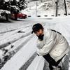 占いと芸術と♏(おまけの雪いちご🍓)