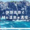 伊豆高原で緑と温泉を満喫 [単焦点レンズ]