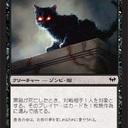 黒猫系男子
