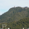 もっと見直されて良い「金華山」の自然