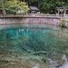 圧巻の鍾乳洞!圧巻の透明度!秋芳洞周辺は水の聖地だ!