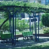 誰もいない休日の昼下がりの公園「自分の写真展4日目」