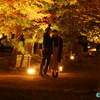 温泉と紅葉「曽木公園」   ー 暗闇に浮かぶ紅葉 ー  紅葉《#10》