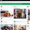 わんわん柏 愛犬投稿サイト(世界中の愛犬家と交流💕)